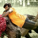 Karuppan-Movie Box office Collection