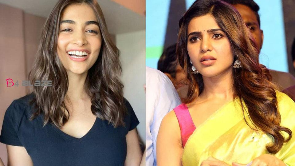 Actress Pooja Hegde must apologize to Samantha, Fans with hashtags