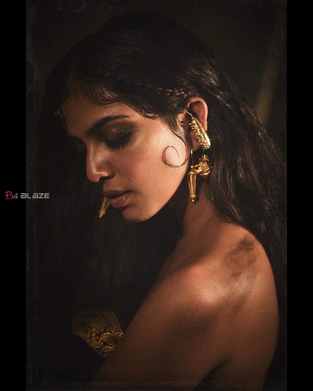 Actress-Malavika-Mohanans-new-photoshoot-as-Chola-princess-1